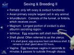 sexing breeding ii