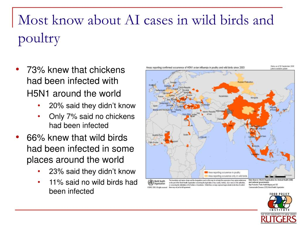 Most know about AI cases in wild birds and poultry