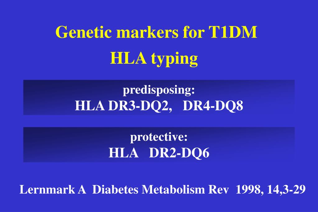 Genetic markers for T1DM