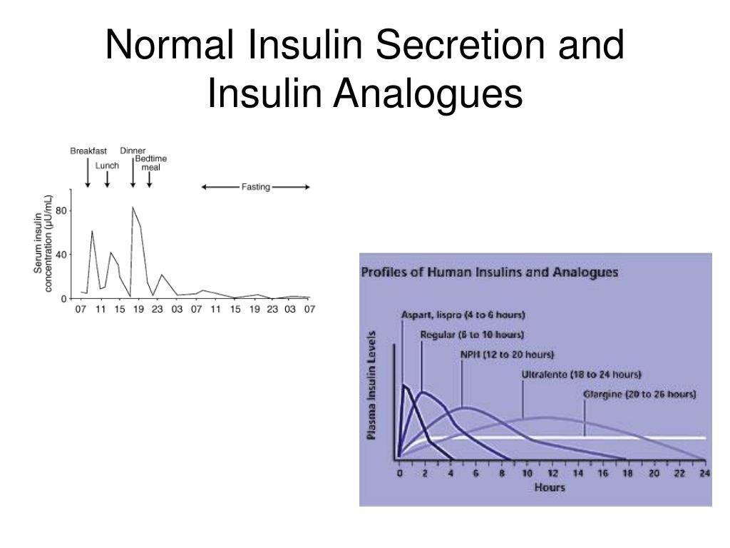 Normal Insulin Secretion and Insulin Analogues