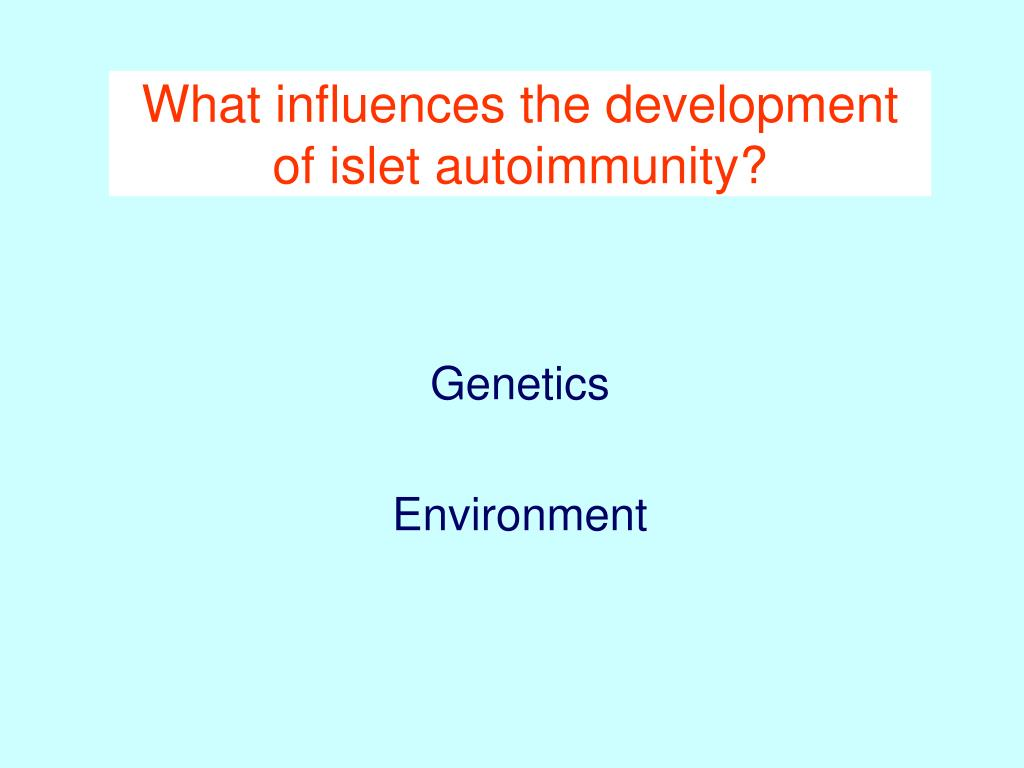 What influences the development of islet autoimmunity?