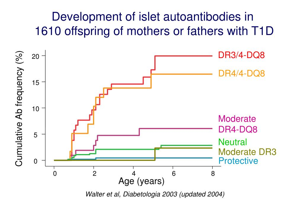 Development of islet autoantibodies in