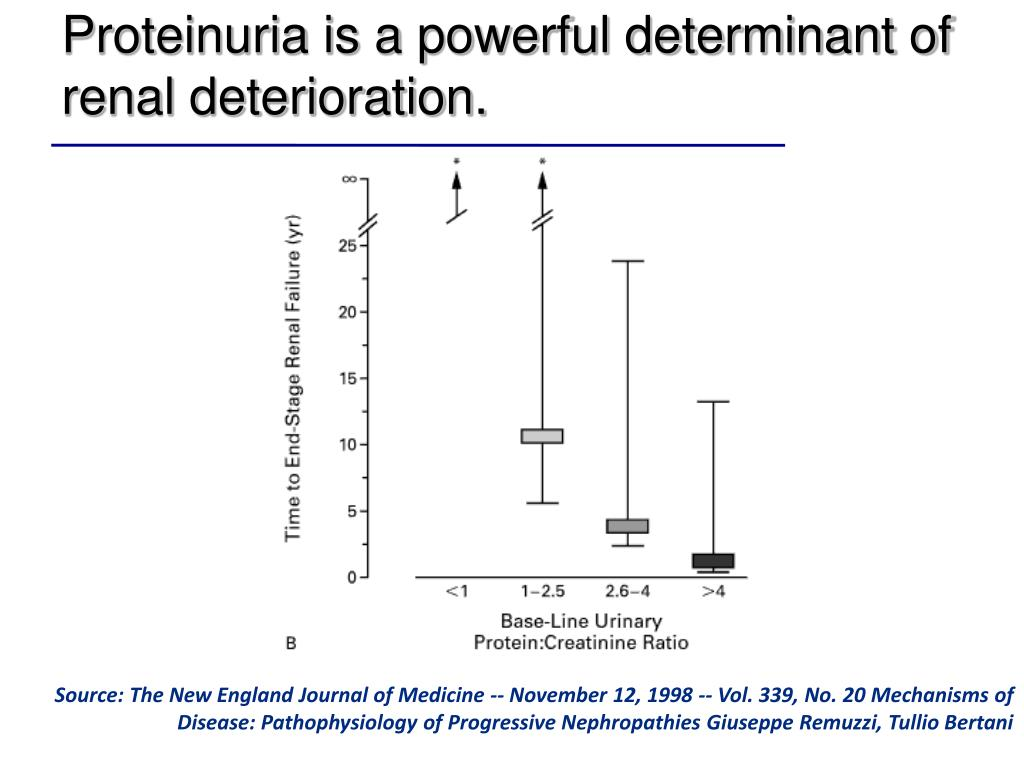 Proteinuria is a powerful determinant of renal deterioration.