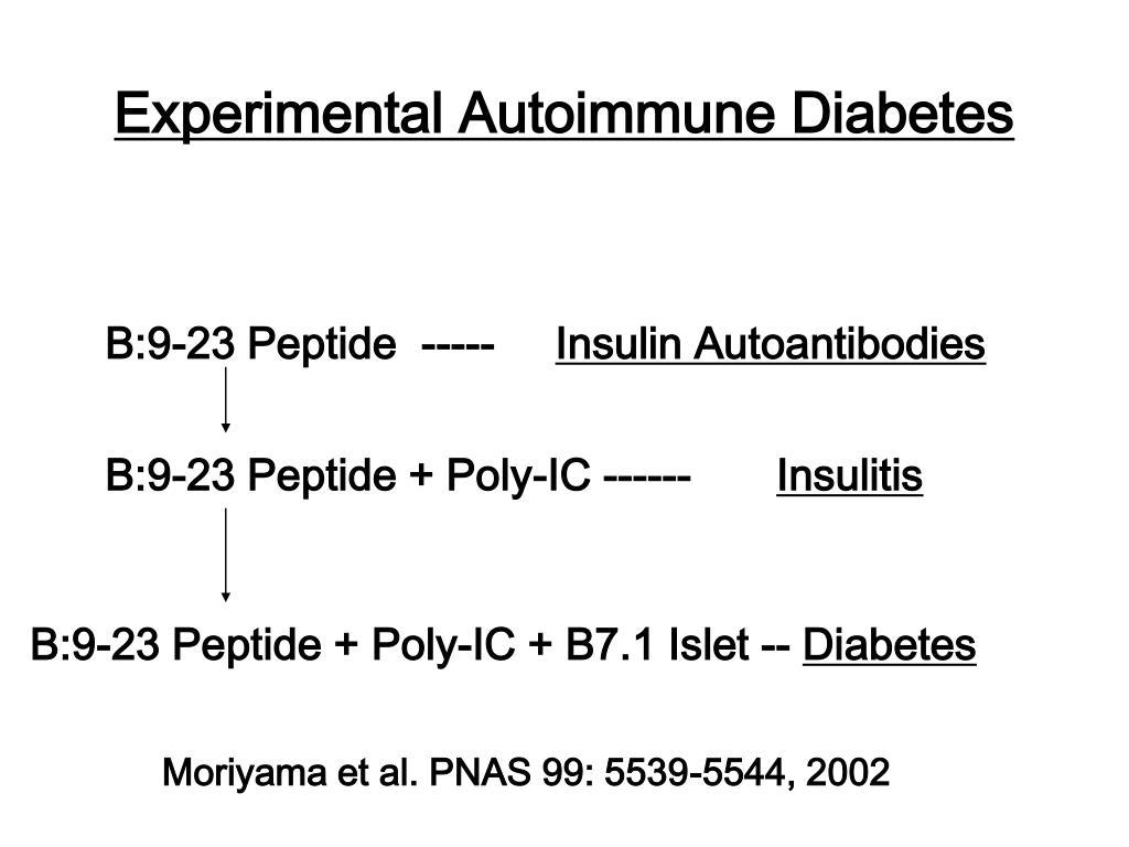 Experimental Autoimmune Diabetes