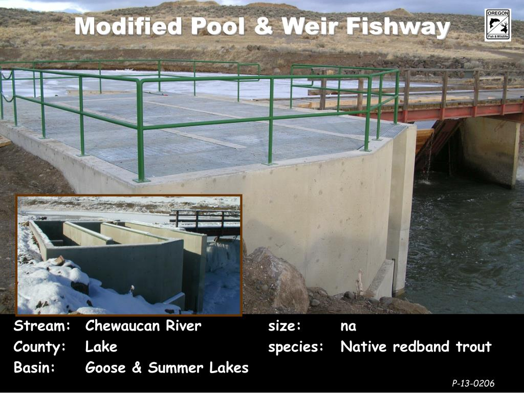 Modified Pool & Weir Fishway