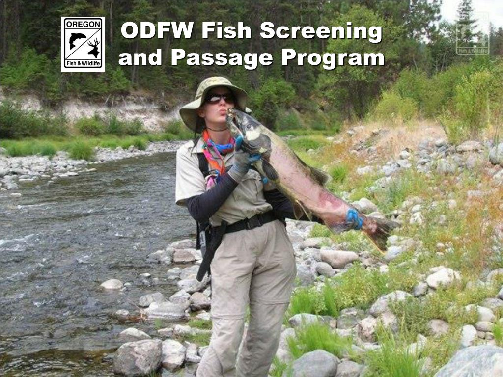 ODFW Fish Screening