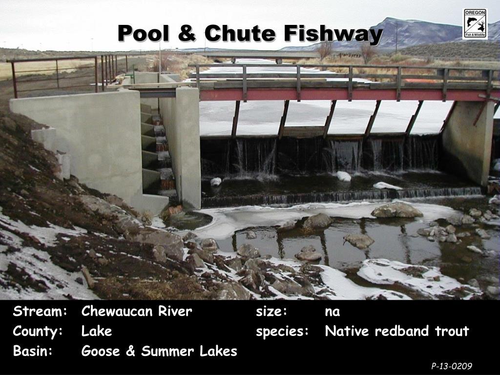 Pool & Chute Fishway
