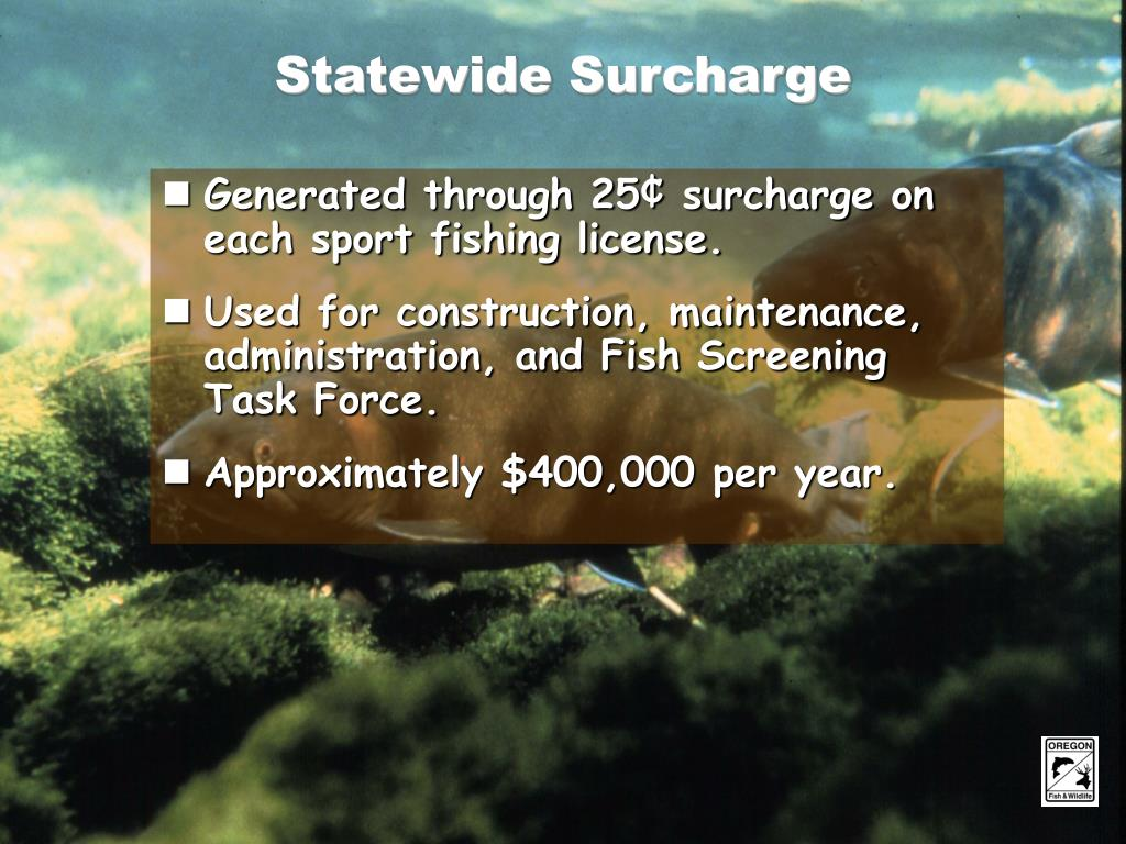 Statewide Surcharge