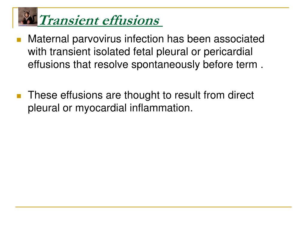 Transient effusions