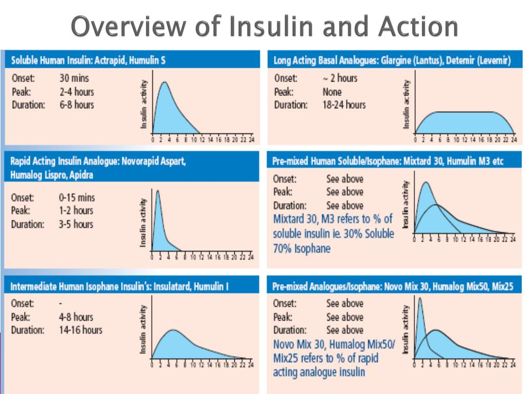 Overview of Insulin and Action