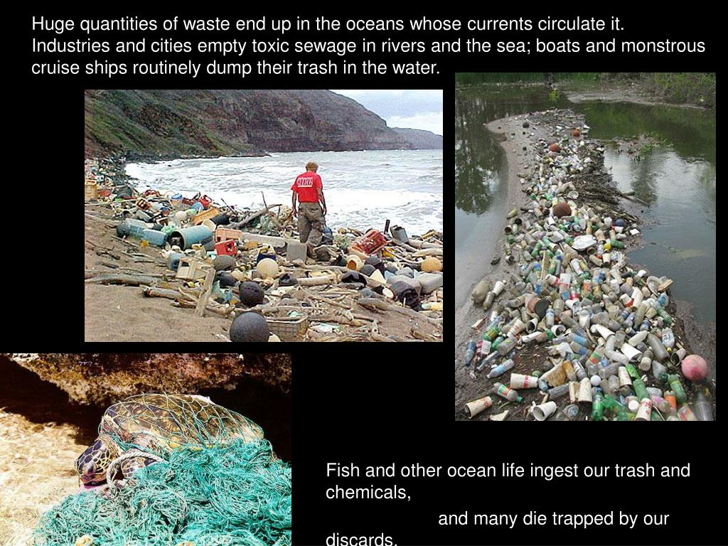Huge quantities of waste end up in the oceans whose currents circulate it.