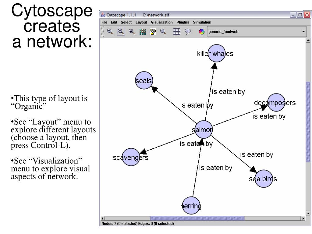 Cytoscape creates