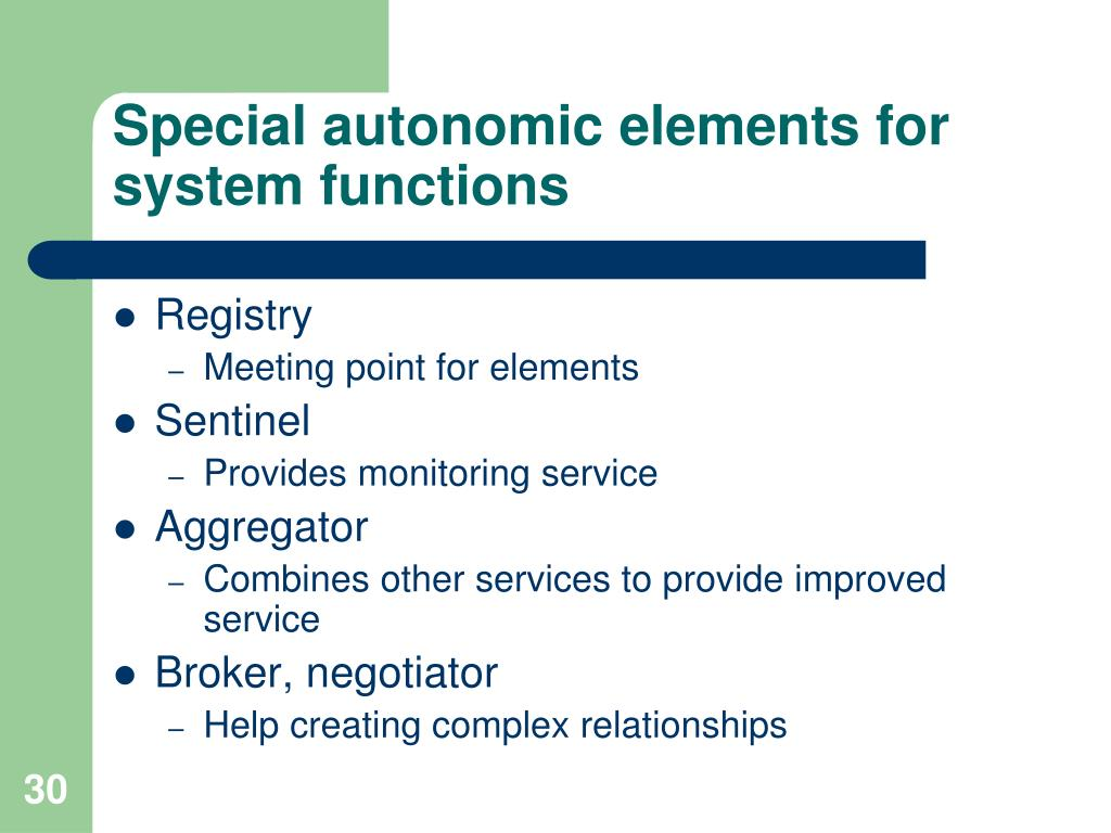 Special autonomic elements for system functions