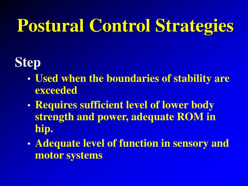 Postural Control Strategies
