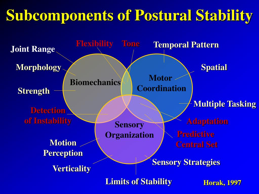 Subcomponents of Postural Stability
