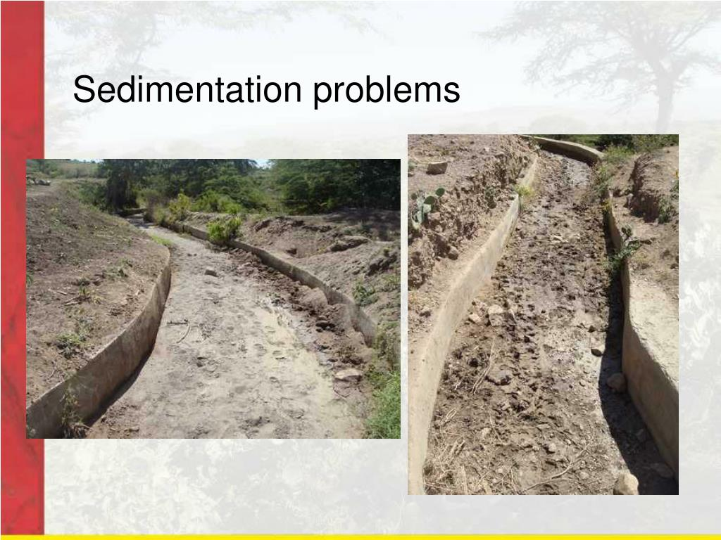 Sedimentation problems