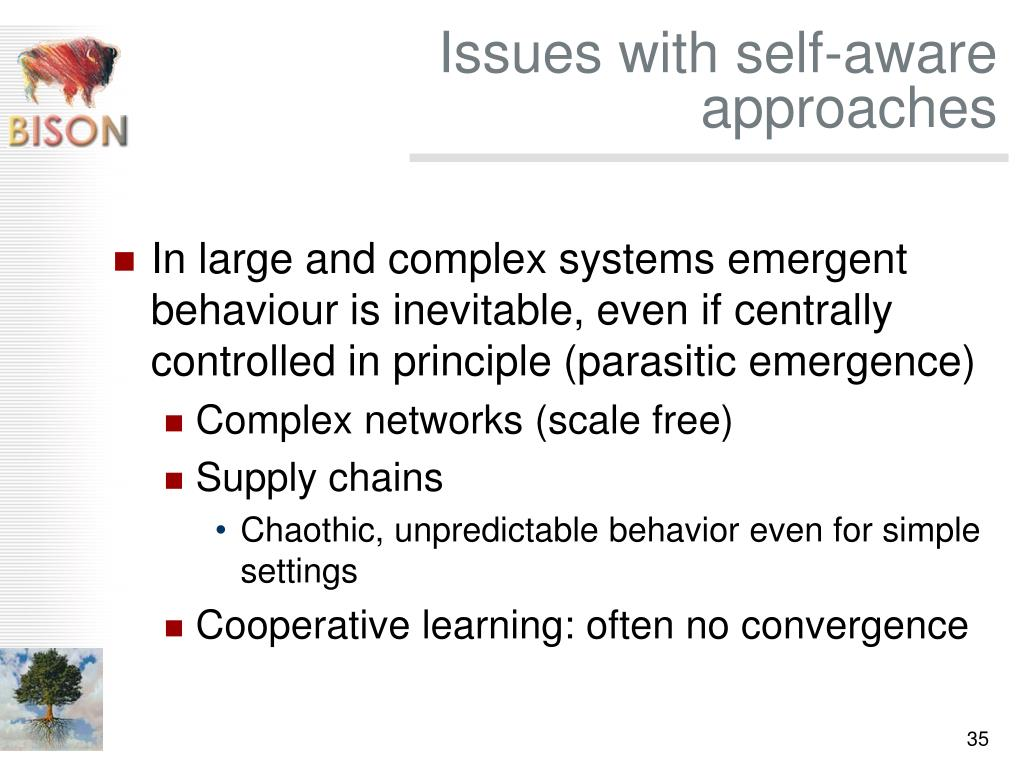 Issues with self-aware approaches