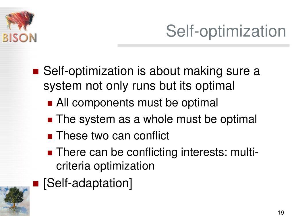 Self-optimization