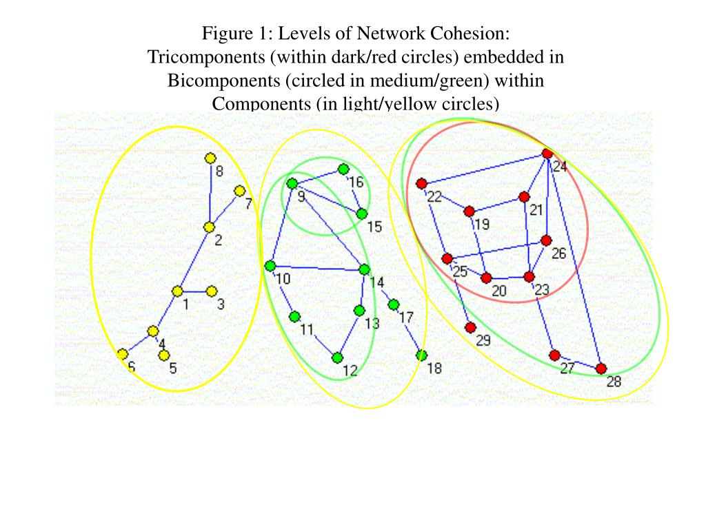 Figure 1: Levels of Network Cohesion: