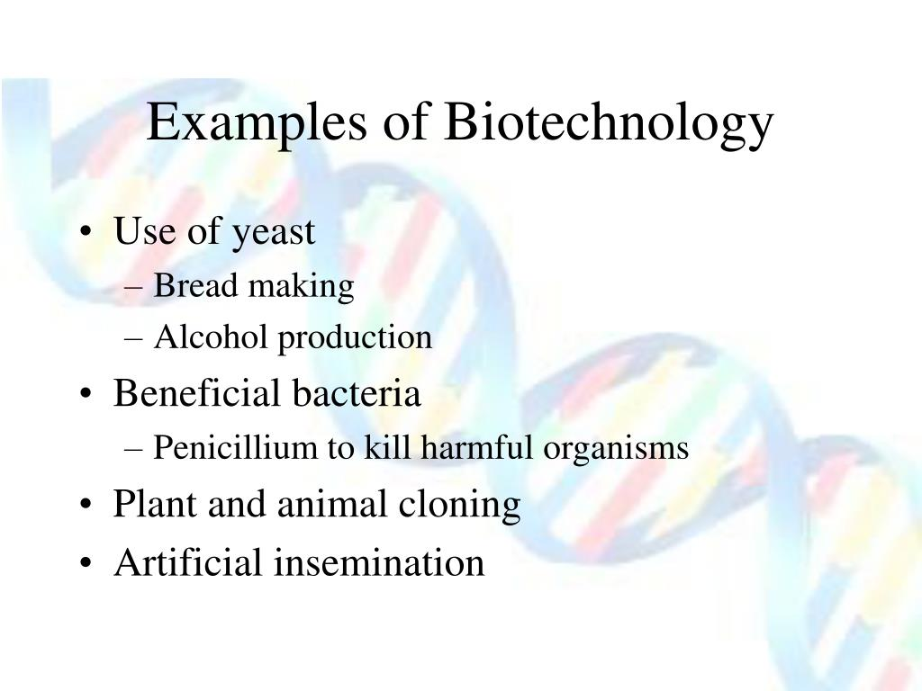 Examples of Biotechnology