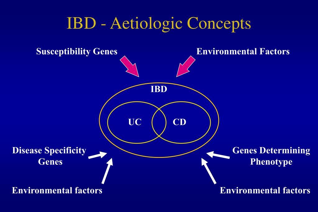IBD - Aetiologic Concepts