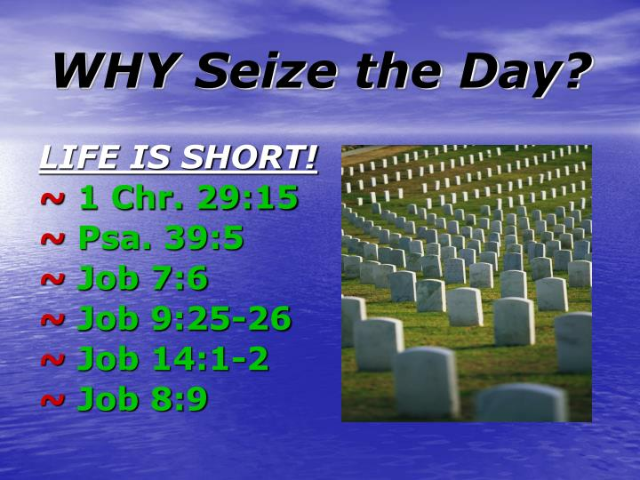 Why seize the day l.jpg