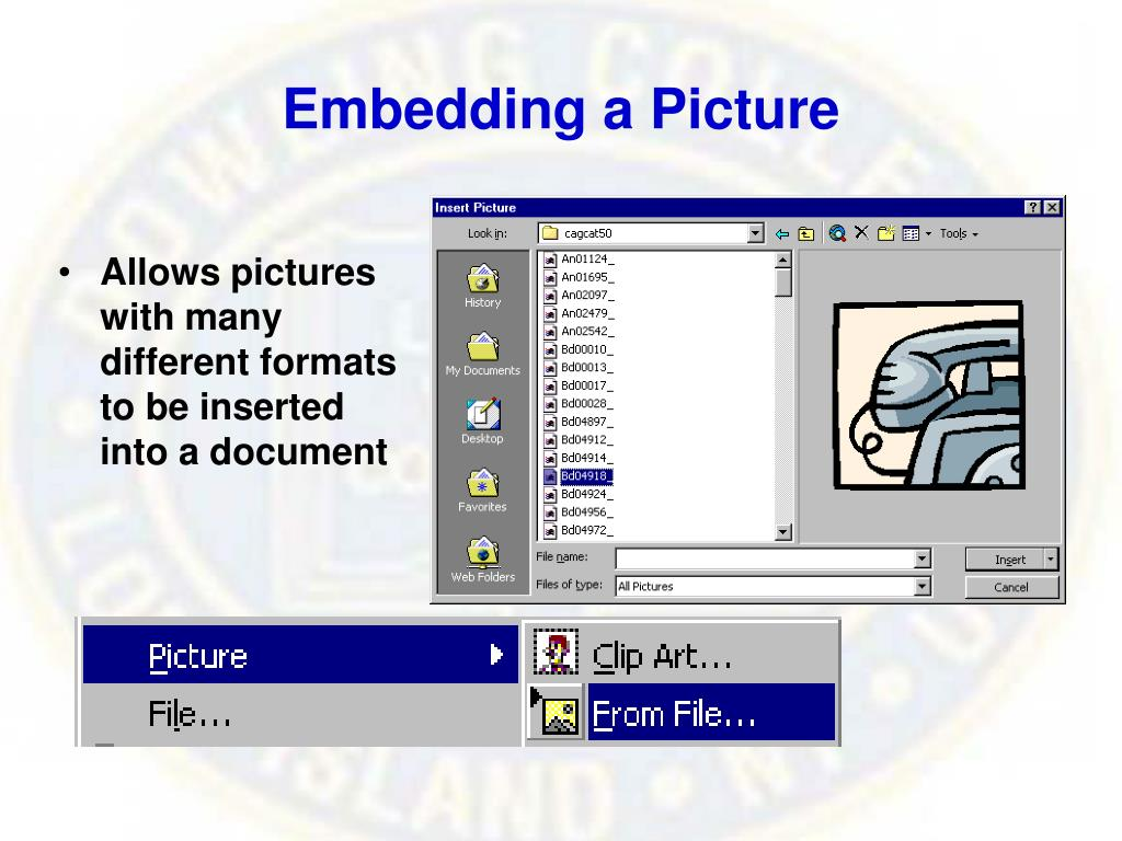 Embedding a Picture