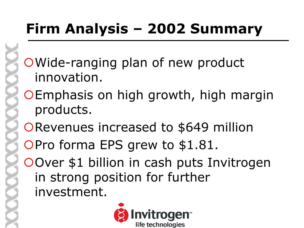 Firm Analysis – 2002 Summary