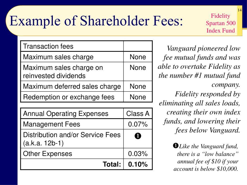 Example of Shareholder Fees: