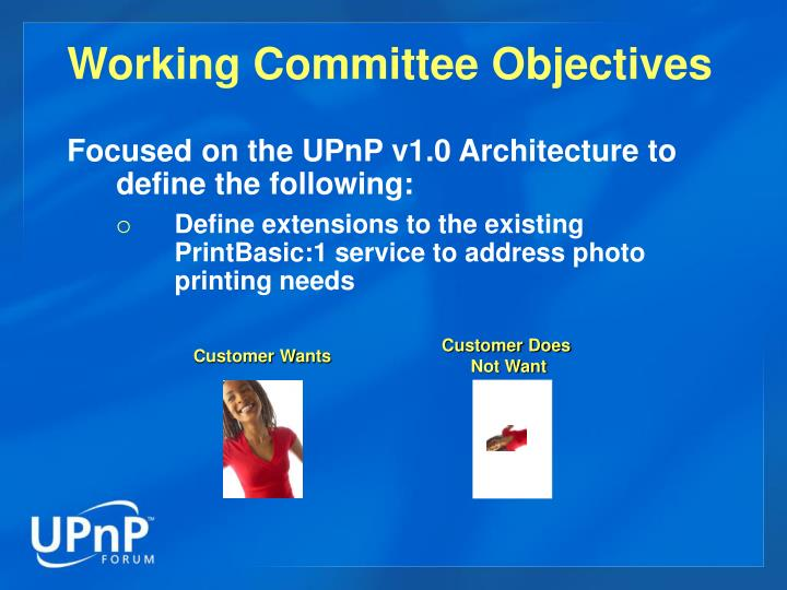 Working committee objectives