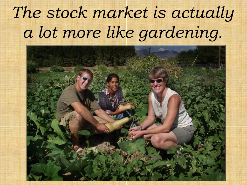 The stock market is actually a lot more like gardening.