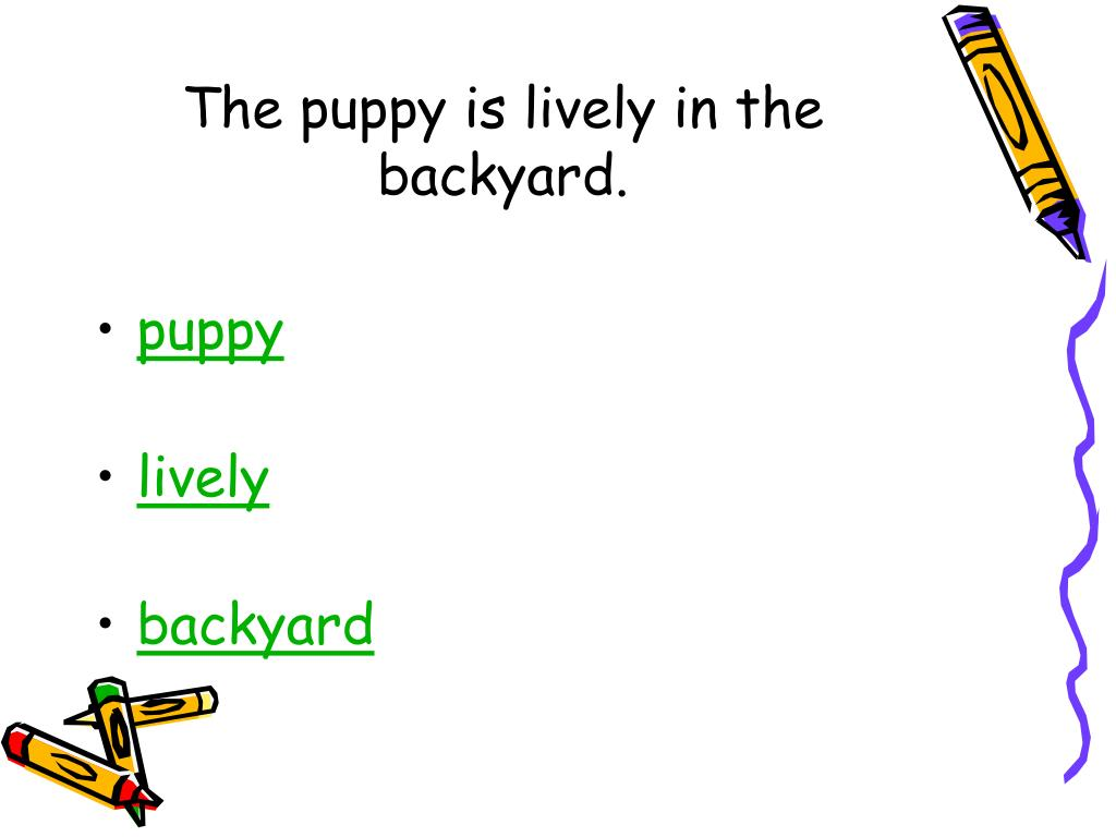 The puppy is lively in the backyard.