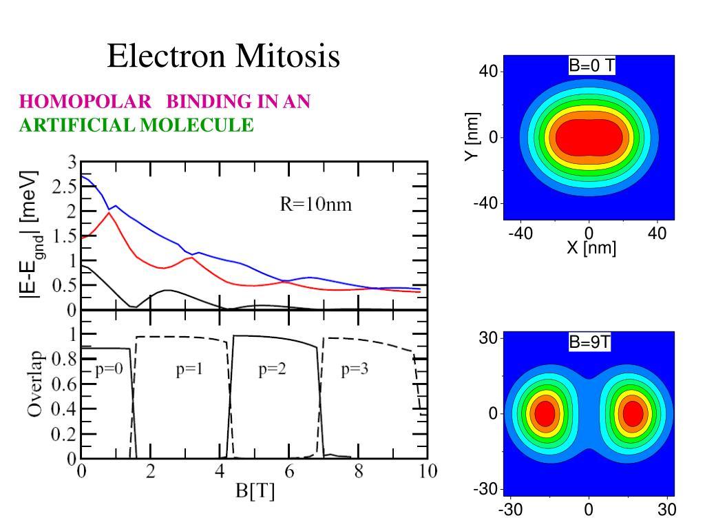 Electron Mitosis