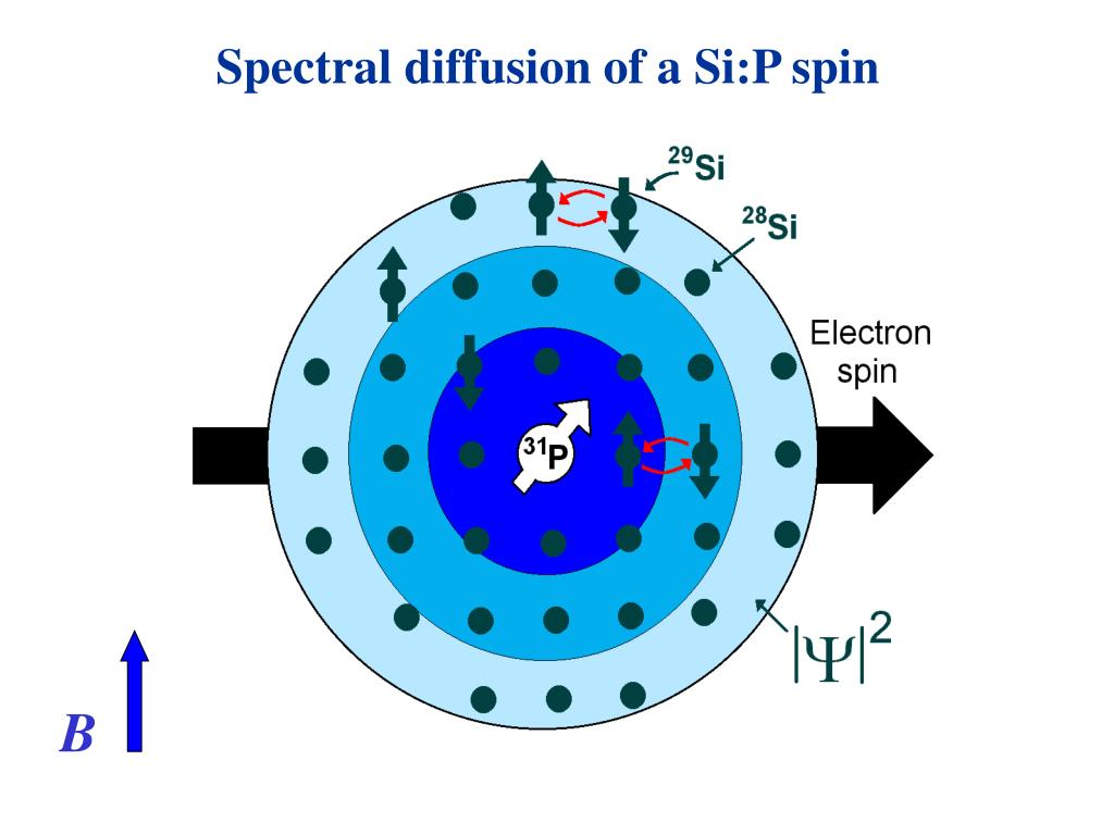 Spectral diffusion of a Si:P spin