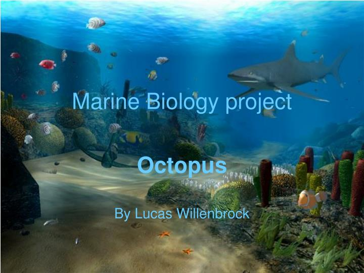 Marine biology project