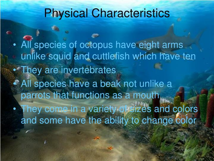 Physical characteristics l.jpg