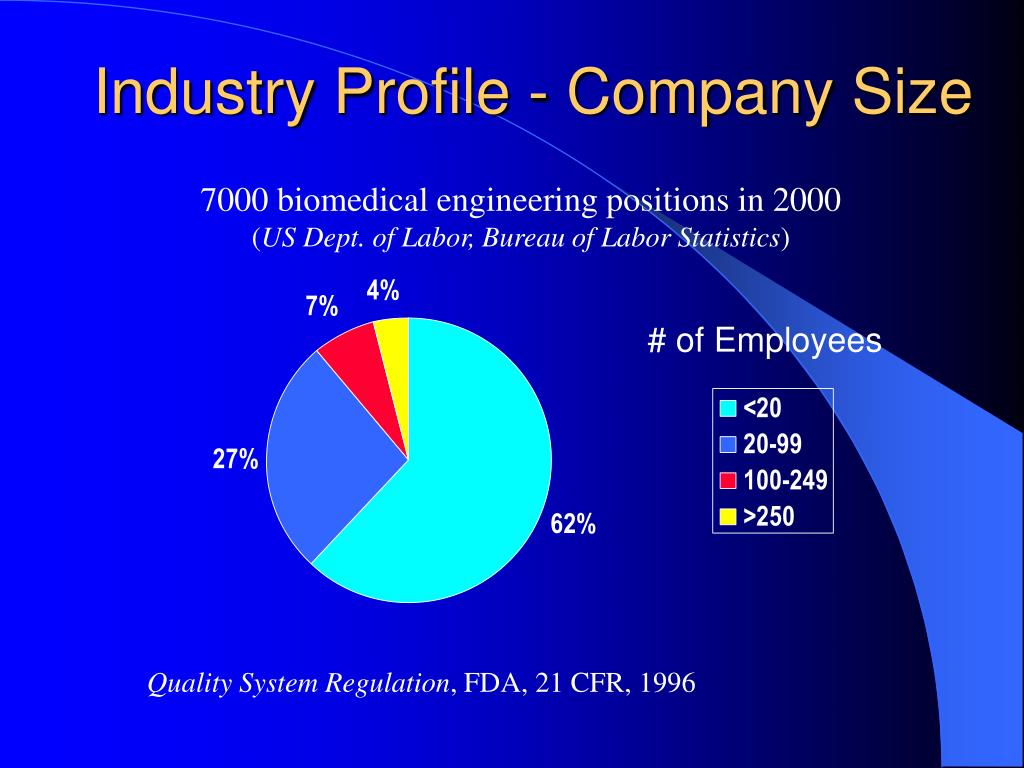 Industry Profile - Company Size