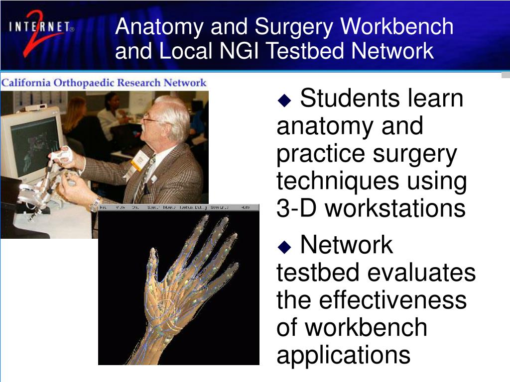 Anatomy and Surgery Workbench and Local NGI Testbed Network