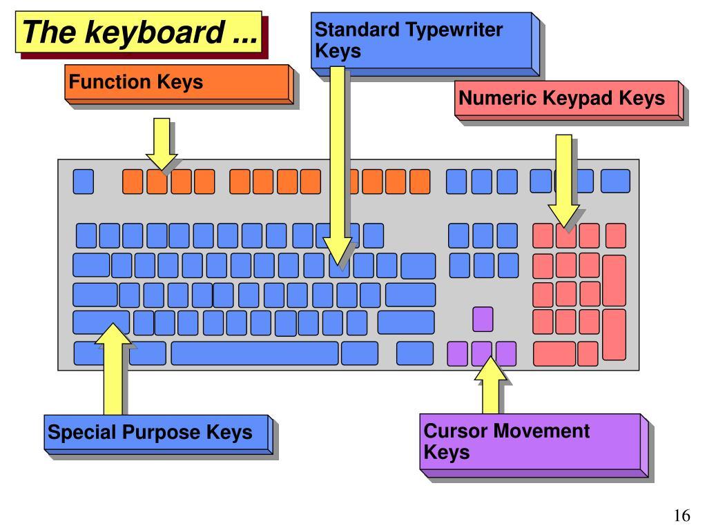 Standard Typewriter Keys