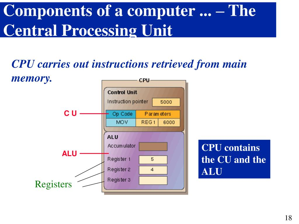 Components of a computer ... – The Central Processing Unit
