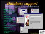 database support