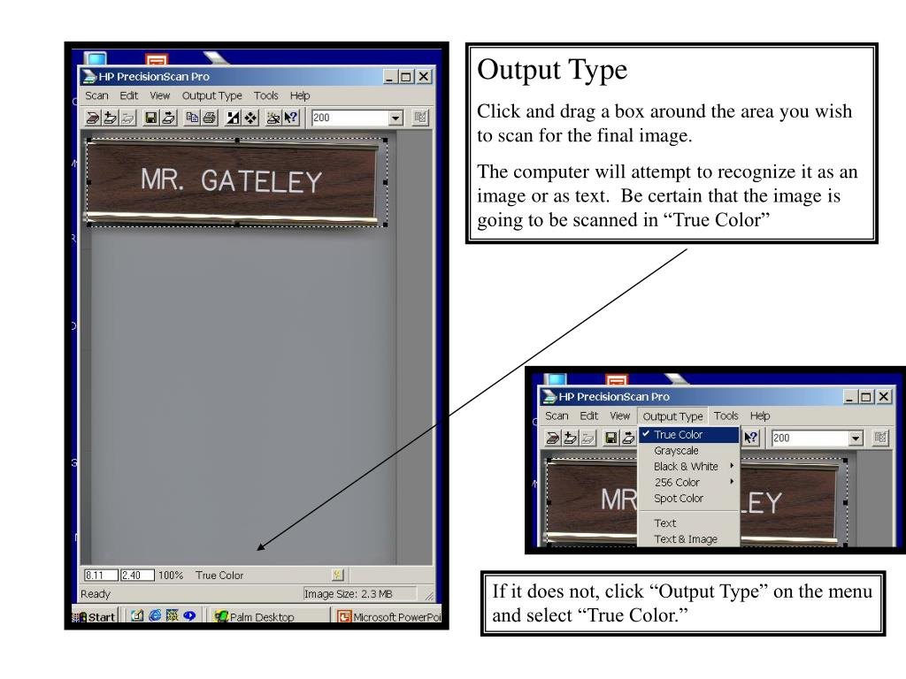 Output Type