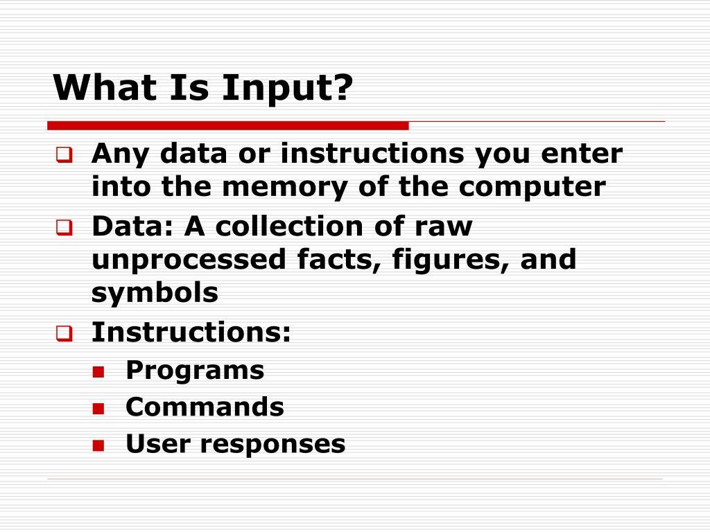 Any data or instructions you enter into the memory of the computer
