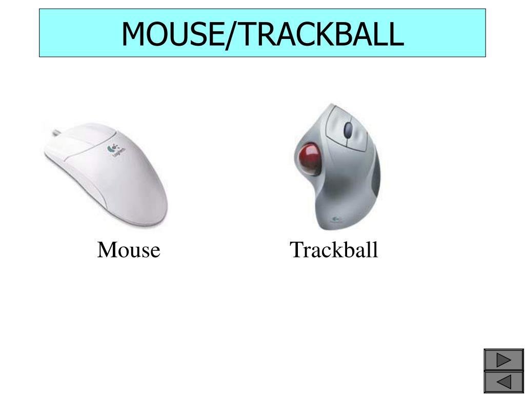 MOUSE/TRACKBALL