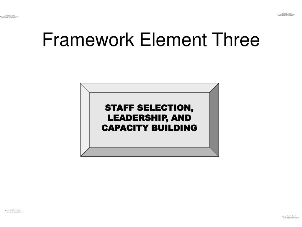 STAFF SELECTION, LEADERSHIP, AND CAPACITY BUILDING
