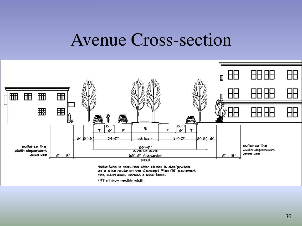 Avenue Cross-section