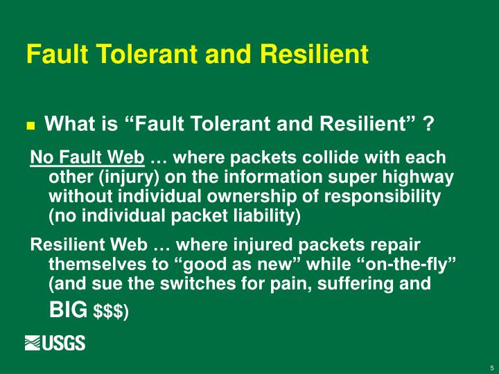 Fault Tolerant and Resilient