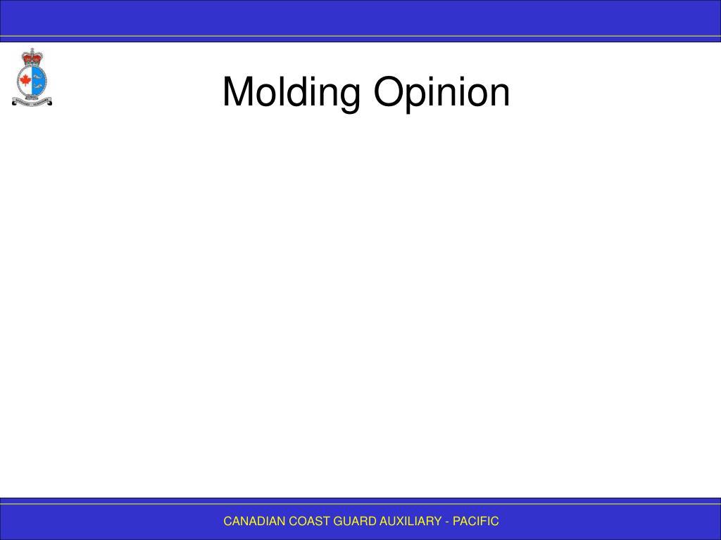 Molding Opinion