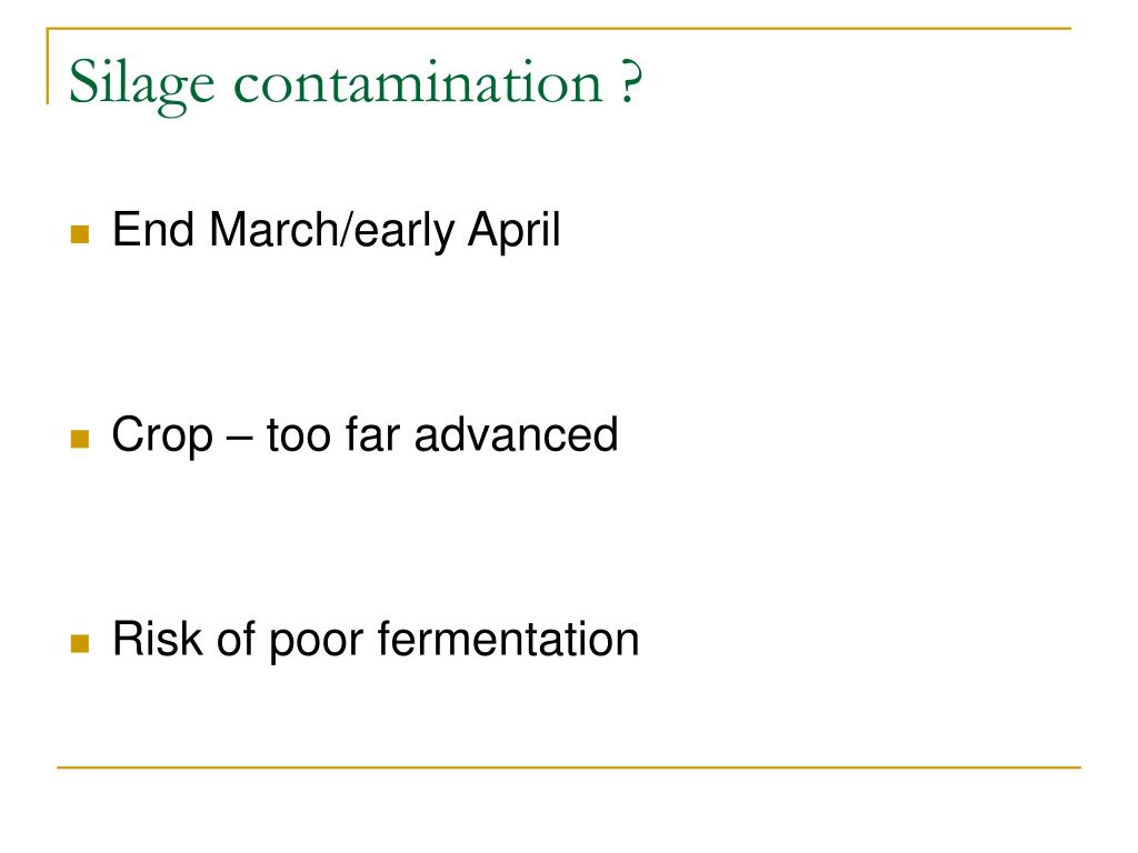 Silage contamination ?