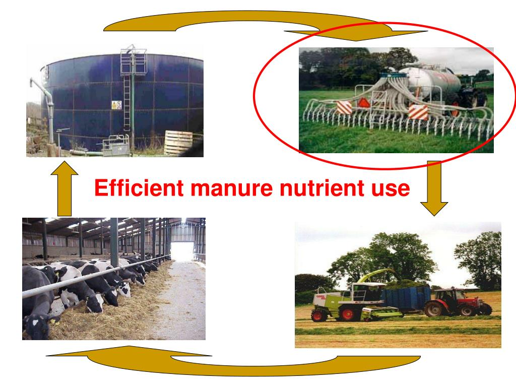 Efficient manure nutrient use